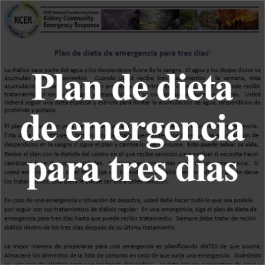 emergency-information-spanish-pdf