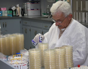 Lab Petri dishes