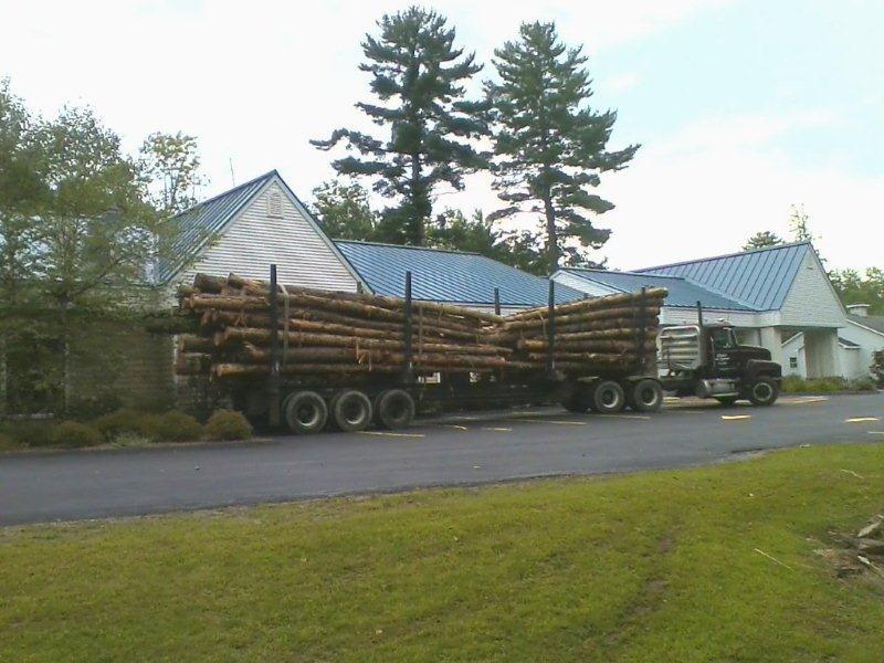 logs_on_truck