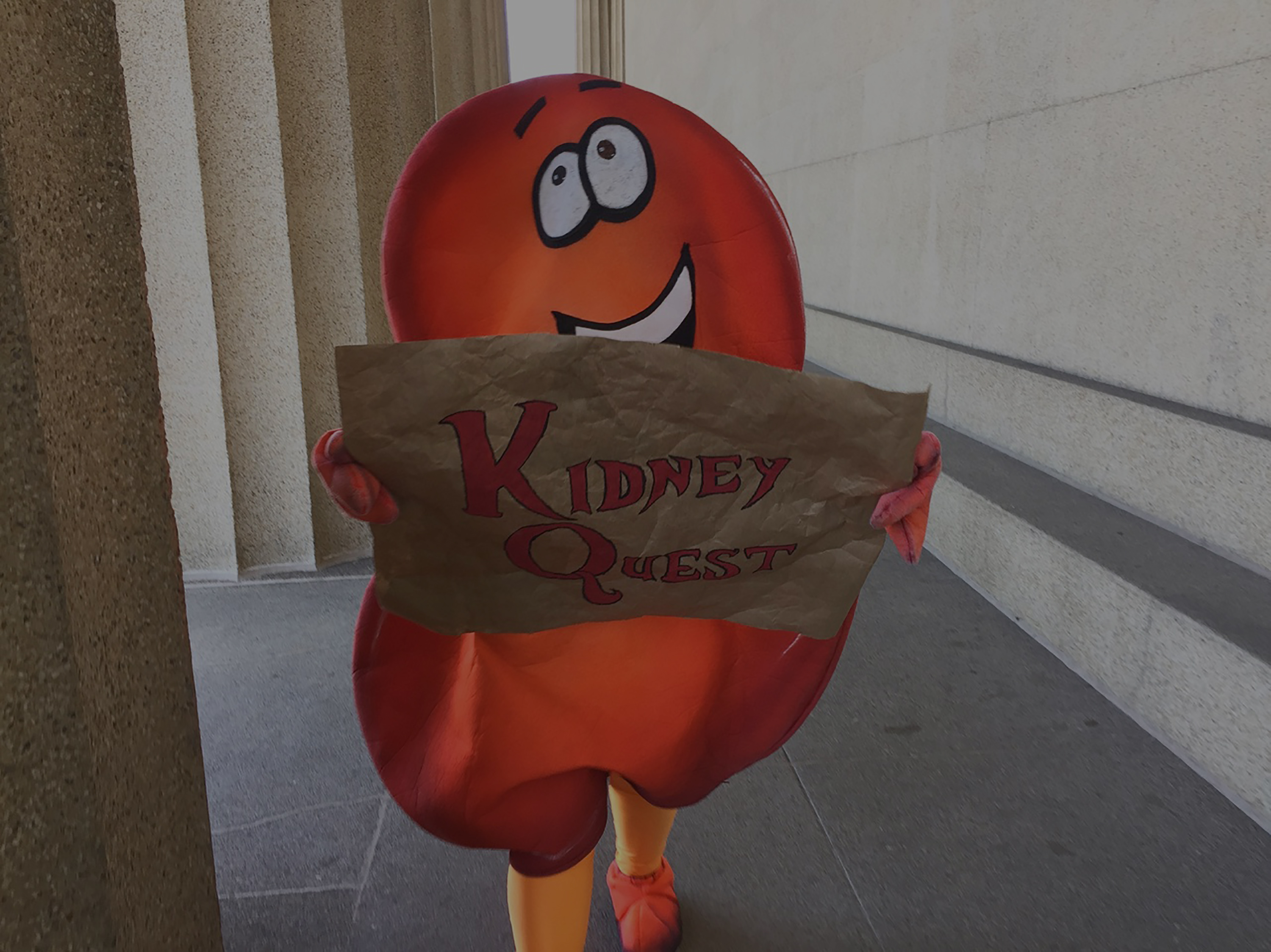 Are you ready to embark on a quest for your best kidney care?